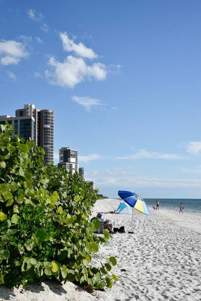 North-Gulfshore-Beach-Seagate-Beach