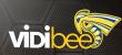 "70% OFF ""VidiBee Developer"" Discount"