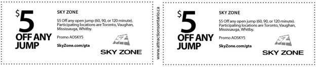 Sky Zone Coupon