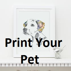 Printyourpet.com Discount Code