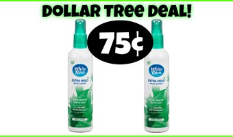 75¢ White Rain Hairspray at Dollar Tree!