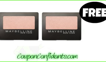 FREE Maybelline EyeShadow at Publix! YES!