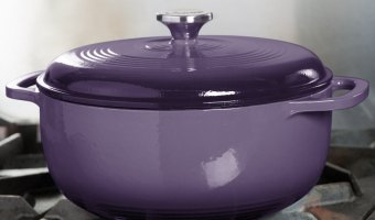 Great Price On Lodge Enameled Cast Iron 6-Quart Dutch Oven
