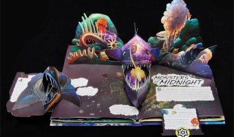 Wild Oceans Pop-up Book $5.70 (reg. $29.99)