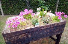 jardin_collectif_bacs_sureleves_maison_de_retraite_permaculture_val_de_marne_partenairejpg