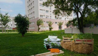ateliers_jardinage_val_de_marne_permaculture_courage_le_groupe
