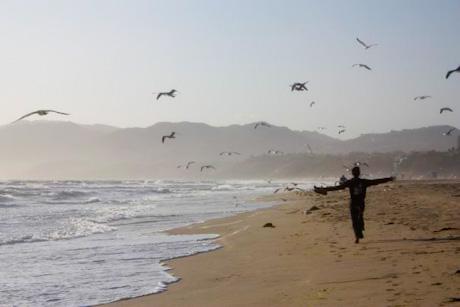 Santa Monica Freedom