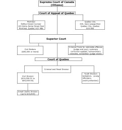 this diagram shows the position of the various courts in the judicial system  [ 1275 x 1650 Pixel ]