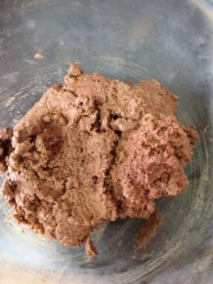 soft dough for wholemeal chocolate thins