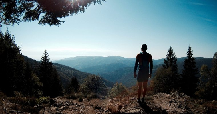 Nicolas Castano : Courir avec les loups