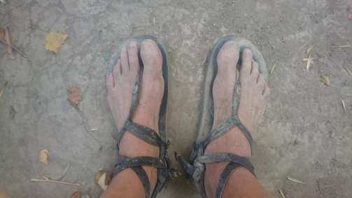 Fred Whecler sandales type huaraches.
