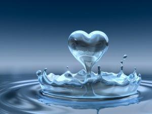Follow your heart (1)