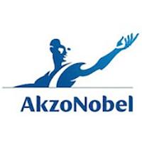 Referentie - Akzo Nobel