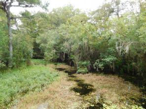 Evergaldes : Kirby Storter Roadside Park