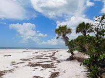 Plage De Barefoot Beach Bonita Springs En Floride Le