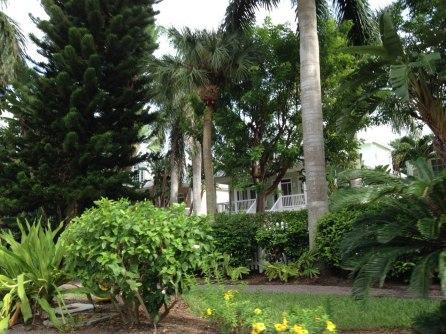 Captiva Island - Floride