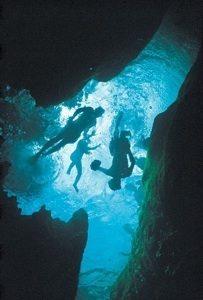 Snorkeling in springs