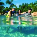 Nager avec les dauphins à Miami