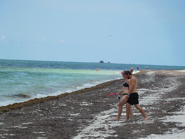 Plongée à Bahia Honda dans les îles Keys de Floride