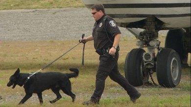 Photo of Etats-Unis : La sécurité dans les aéroports en question