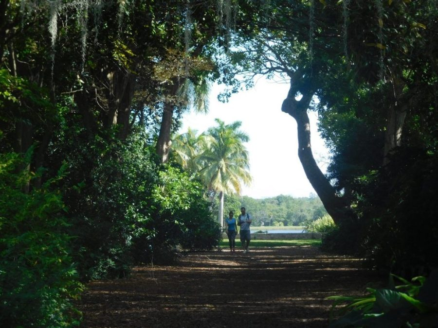 Fairchild Tropical Garden - Miami - Floride