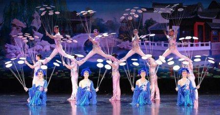 New Shangaï Circus