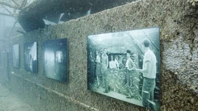 Photo of Key West : Une expo à 27 mètres de profondeur