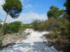 National Wildlife Refuge de Hobe Sound / Floride
