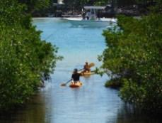 Kayak sur l'Indian River à Jupiter / Floride