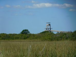 Tour d'observation de Shark Valley / Parc National des Everglades