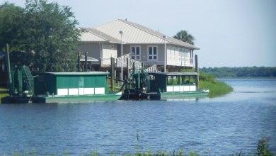 Photo of Myakka River State Park : le grand parc sub-tropical de Sarasota