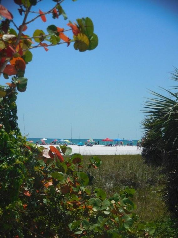 Plage de Siesta Beach sur l'île de Siesta Key à Sarasota / Floride