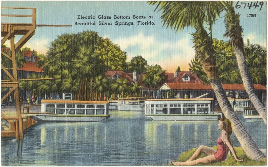 Carte postale ancienne des sources de Silver Springs en Floride