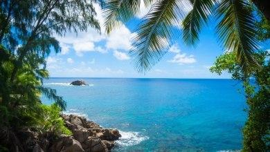 Photo of Visiter la Guadeloupe depuis la Floride