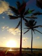 Lever-de-soleil-Lauderdale-by-the-Sea8369