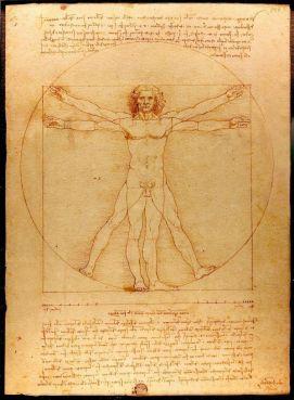 Léonard de Vinci : L'Homme de Vitruve