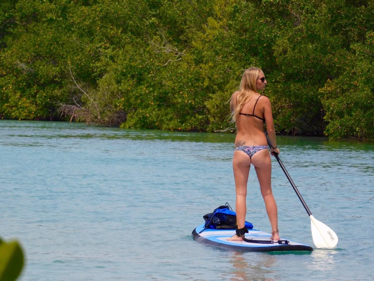 Îles et Mangrove de Fort Pierce en Floride
