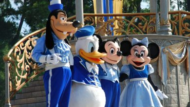 Photo of Visiter « Disney World  » à Orlando en Floride