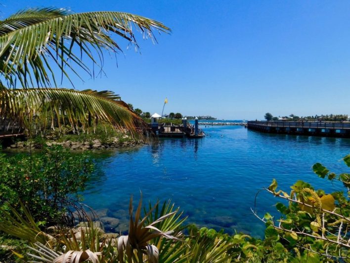 Snorkeling et plongée sous-marine dans le lagon de Peanut Island (à West Palm Beach en Floride)