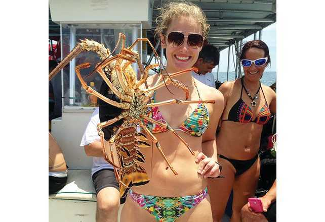 BugFest-By-The-Sea à Lauderdale-by-the-Sea