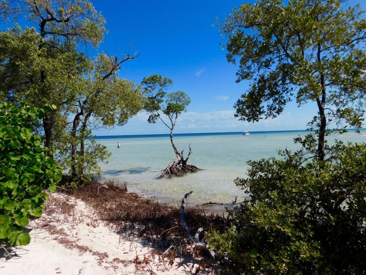 "Le plus beau site naturel de Floride : le ""backcountry"" des Lower Keys"