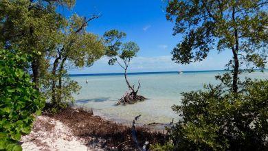 Photo of Le plus beau site naturel de Floride : le «backcountry» des Lower Keys