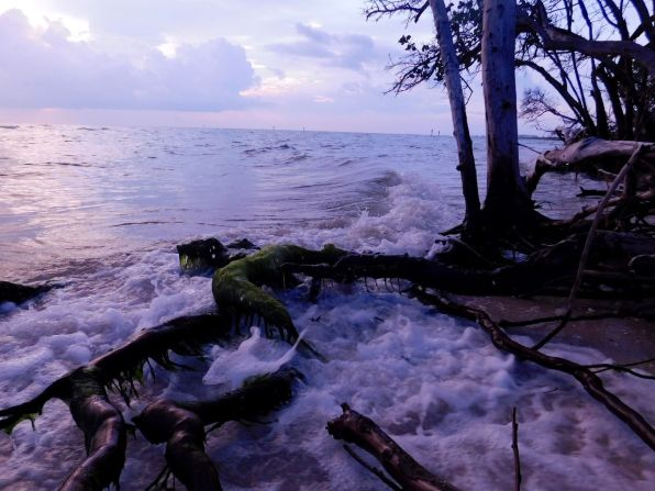Coucher de soleil sur la plage de Delnor Wiggins à Naples en Floride.