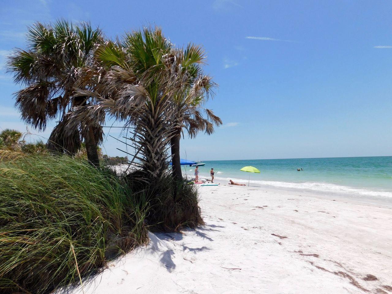 Egmont Key Ile Floride 7568 Le Courrier De Floride