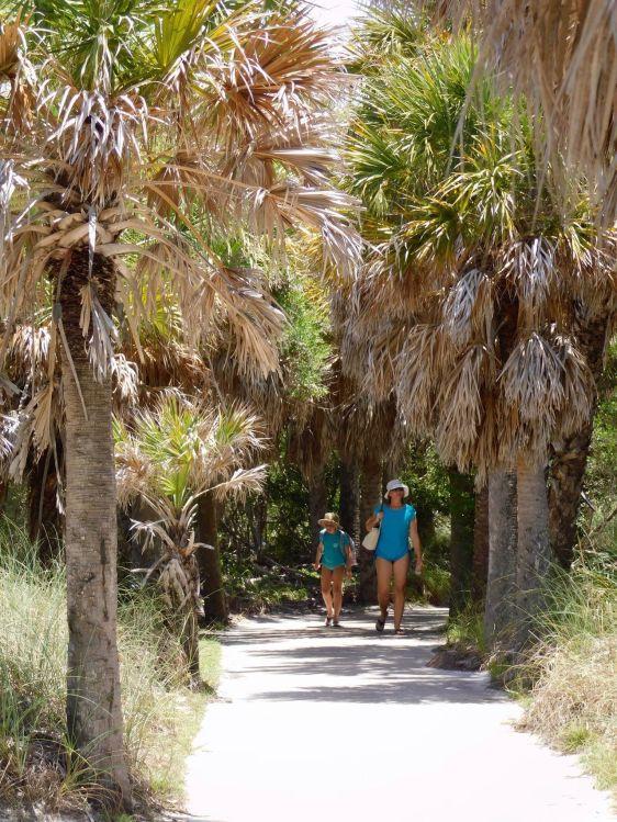 Egmont-Key-ile-Floride-7596
