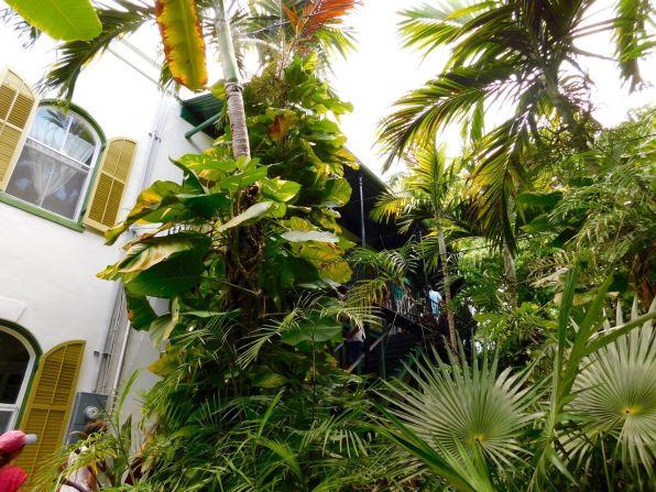 Maison D 39 Ernest Hemingway Key West Un Crin Pour Un