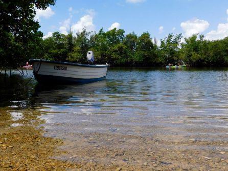 Oleta River State Park (North Miami Beach en Floride)