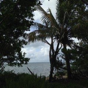 Plage de Coco Plum Beach sur Marathon / Keys de Floride