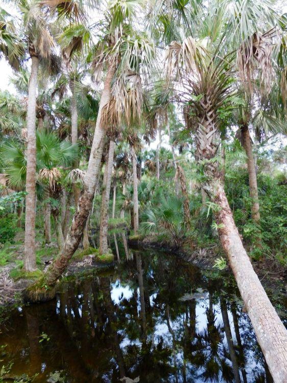 Riverbend Park à Jupiter (Floride)