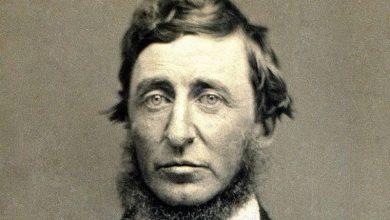 Photo of Thoreau : le mythe de la cabane américaine au fond des bois